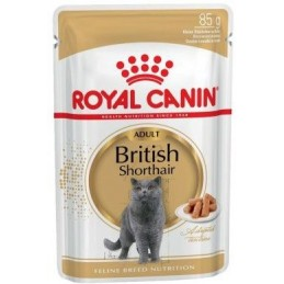 Royal Canin British Shorthair Wet