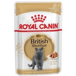 Royal Canin British Shorthair Wet