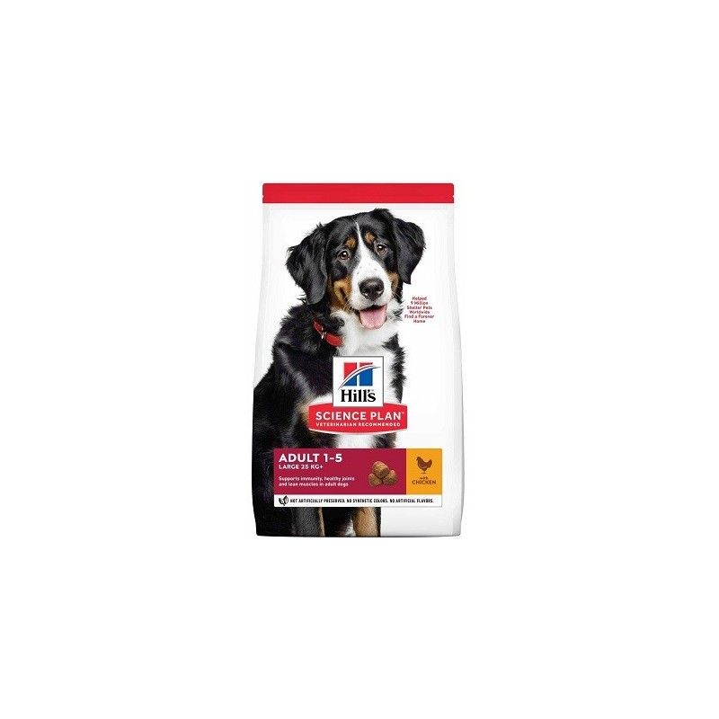 HILL'S Science Plan Canine Adult Large Breed
