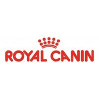 Royal canin maistas